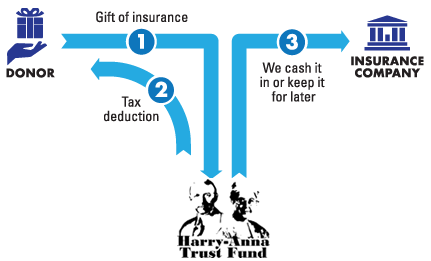 lifeinsurance image